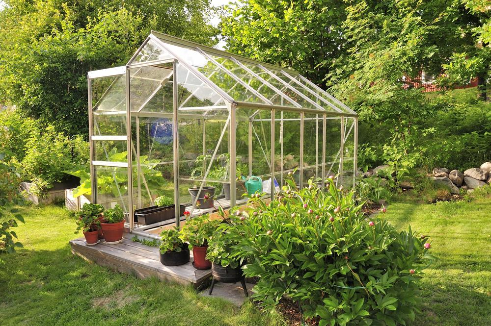 3 Greenhouse Design Ideas For Your Backyard | TotalHousehold.com