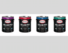 Glidden Paint Prize Package